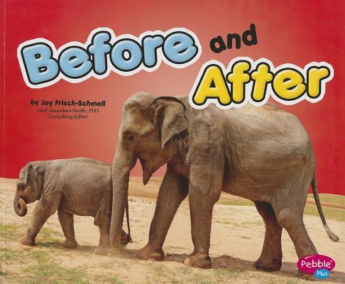 Before and After By Frisch-schmoll, Joy